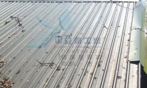 鐵皮屋雙層屋頂隔熱工法03-3.jpg