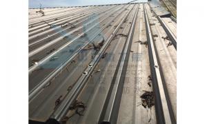 鐵皮屋雙層屋頂隔熱工法03-4.jpg